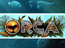 В онлайн казино автоматы Orca