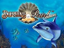 Dolphin's Pearl Deluxe на деньги