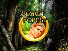 Secret Forest в казино на деньги