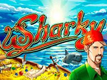 В казино на деньги аппарат Sharky