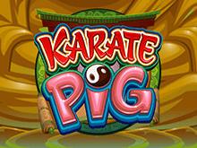 Играть в игровой гаминатор Karate Pig от Microgaming онлайн с выводом