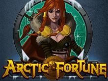 Играть в игровой гаминатор Arctic Fortune от Microgaming онлайн с выводом